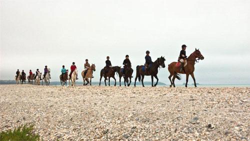 Centre équestre et poney club de la Foucheraie