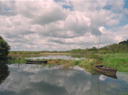 Marais de Gannedel - Y Rollo