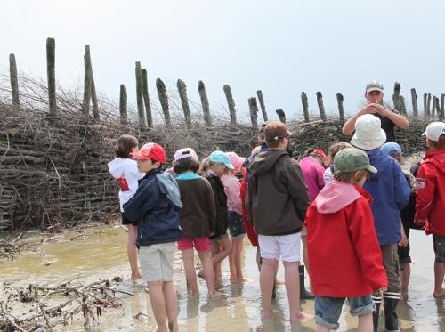 à la rencontre des activités humaines dans la Baie