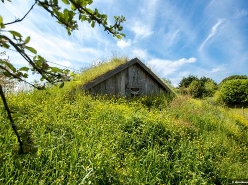 La Belle verte Les ecolodges à Saint-M'Hervé
