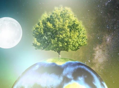 terre_rêve